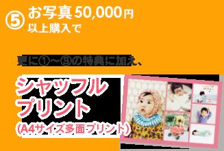 5.お写真50,000円以上購入で、更に1〜3の特典に加え、シャッフルプリント(A4サイズ多面プリント)
